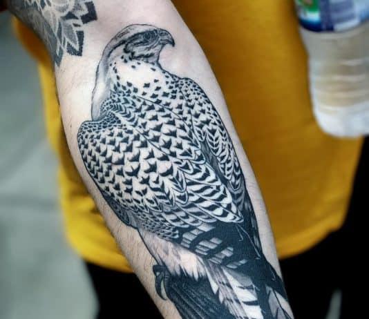 tatuaggio falco