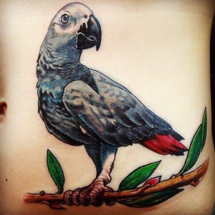 pappagallo blu tattoo