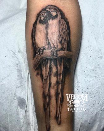 pappagallo tattoo