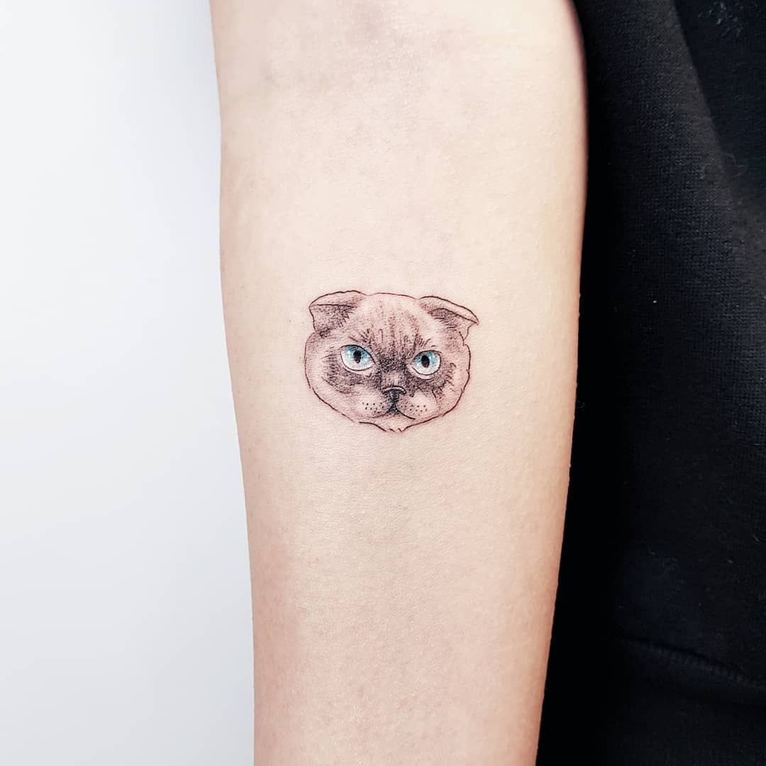 Tattoo gatto by @by_vas
