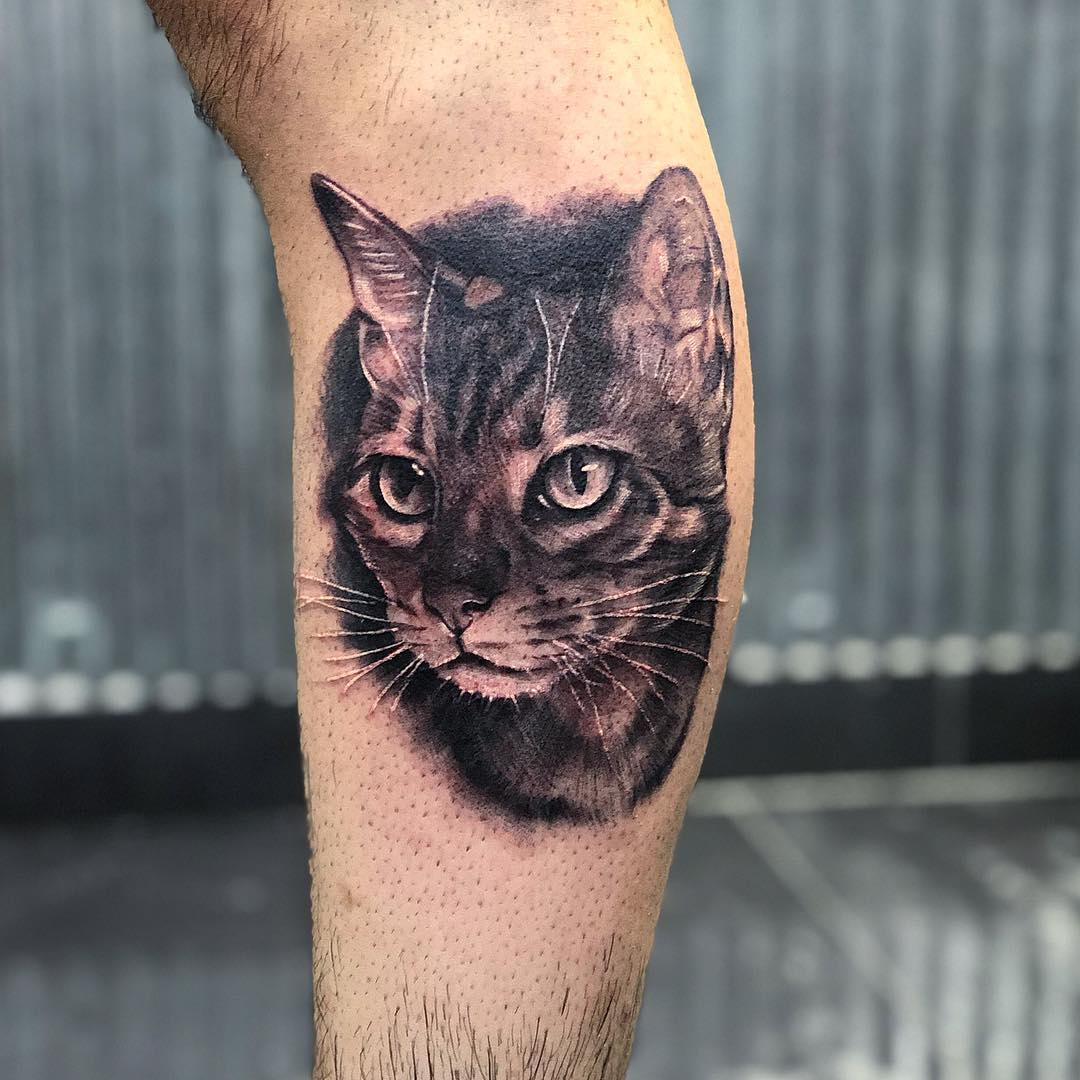 Tattoo gatto by @carlos_arana_tattoo