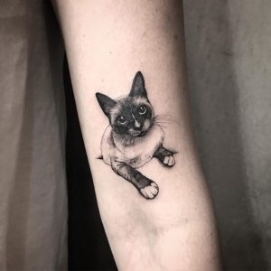 Tattoo gatto by @samanthatattoo