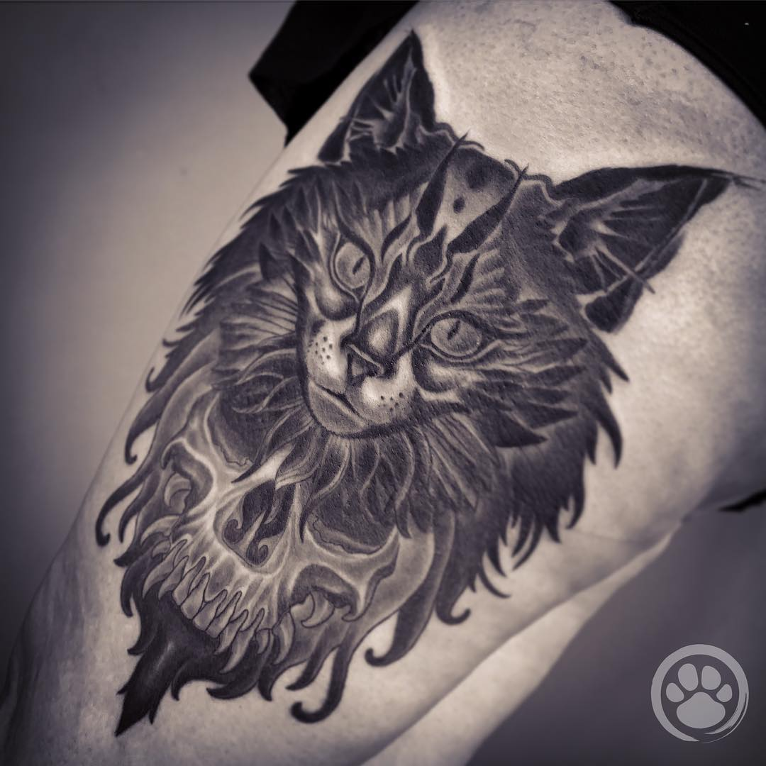 tattoo gatto by @tanuki_tatto0