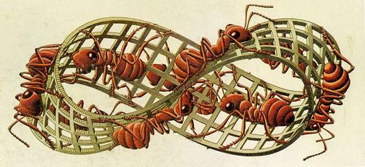 C.M.Escher, Striscia di Moebius II, xilografia, 1963