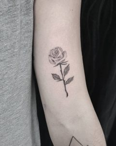 rosa tattoo by @minataur.tattoo