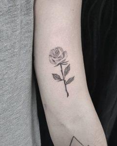 rosa tattoo by @minataur.tattoo